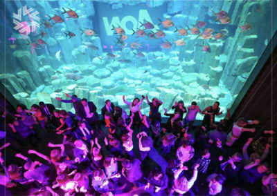 Organize with Gold for events an original event at the Aquarium