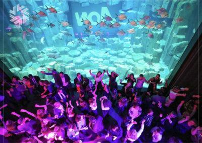 Organisez avec Gold for events un événement original à l'Aquarium